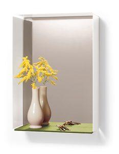 Mirror-Box