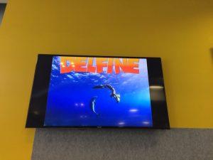 IMAX Film über Delfine