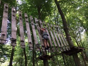 Beim Klettern im Kletterwald